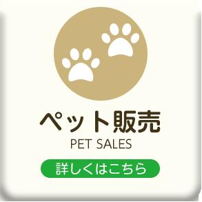 埼玉県入間郡越生のきくた動物病院・わんにゃん美容室88における犬・猫などのペット販売
