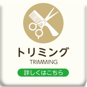 埼玉県入間郡越生で犬・猫のトリミング、シャンプー、カットはわんにゃん美容室88