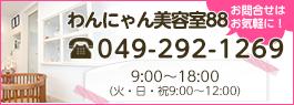 埼玉県入間郡越生で犬・猫のトリミング・シャンプー・カットはわんにゃん美容室88 TEL.049-292-1269